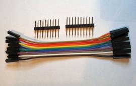 10 Polig Jumper Kabel - 10 cm